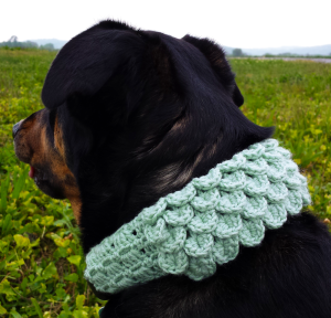 Unseign Crocodile Dog Scarf Crochet Pattern