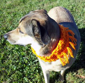 Orange Dog Scarf Crochet Pattern by Unseign